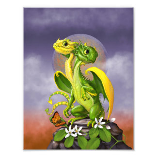 Lemon Lime Dragon 8.5x11 Print