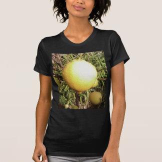 Lemon On Tree Shirts