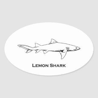 Lemon Shark Illustration Oval Sticker