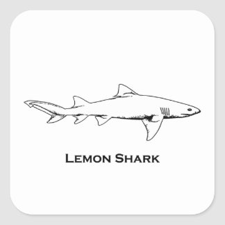 Lemon Shark Illustration Square Sticker