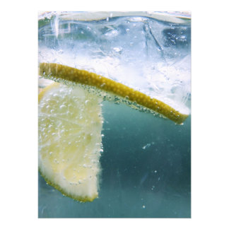 Lemon Slice Photo Print