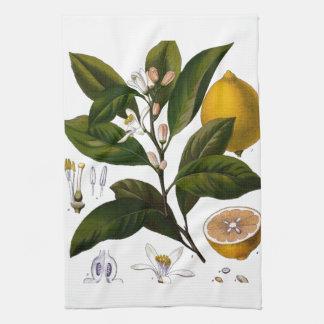Lemon Tea Towels