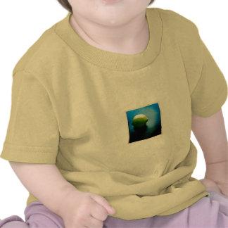 Lemon Tee Shirts