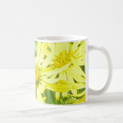 Lemon Yellow Daisies. Mug
