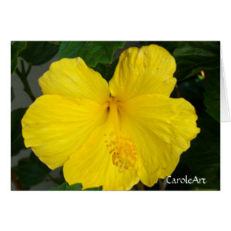 """Lemon Yellow Hibiscus"" Greeting Card"