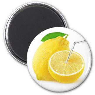 Lemonade Magnet