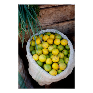 Lemons and Limes in a Market Sack Poster