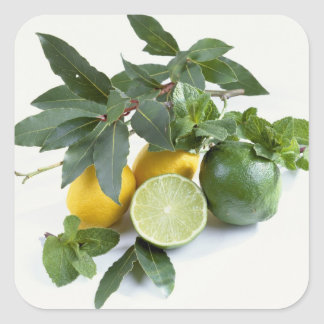 Lemons For use in USA only.) Square Sticker