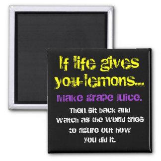 Lemons Grapes Fridge Magnets