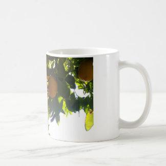 lemons sun coffee mug