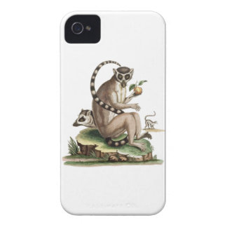 Lemur Artwork iPhone 4 Covers