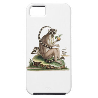Lemur Artwork iPhone 5 Covers