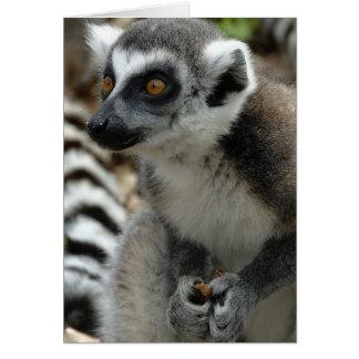 Lemur Monkey Greeting Card