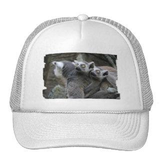 Lemur Piggy Back Baseball Hat