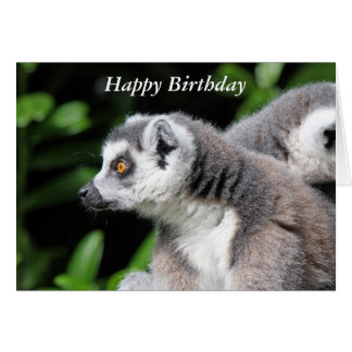 Lemur ring-tailed cute birthday greetings card