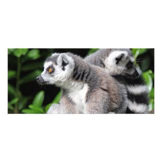 Lemur ring-tailed cute photo custom name bookmark customised rack card