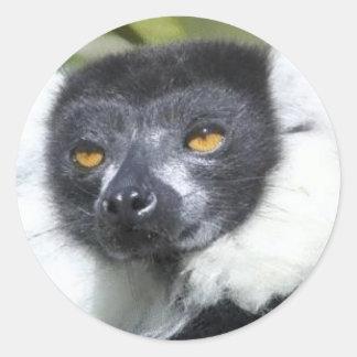 Lemur Stickers