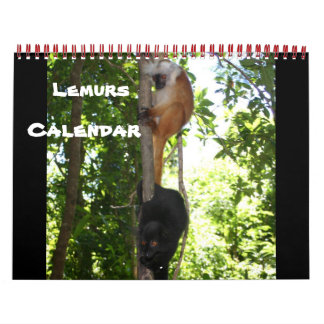 Lemur Wild Primate Welcome Home Destiny Destiny'S Calendars