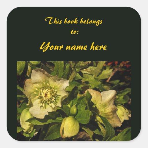Lenten Rose Hellebore Bookplate Sticker