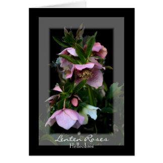 Lenten Roses Note Cards