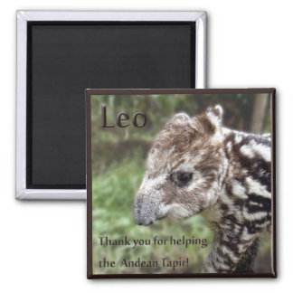 Leo the Andean Tapir Square Magnet