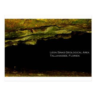 Leon Sinks Geological Area Postcard