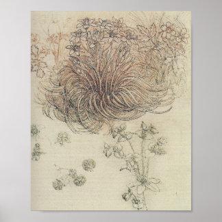 Leonardo Botanical Study Poster