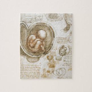 Leonardo da Vinci Studies of the Fetus in the Womb Jigsaw Puzzle