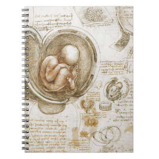Leonardo da Vinci Studies of the Fetus in the Womb Spiral Notebook