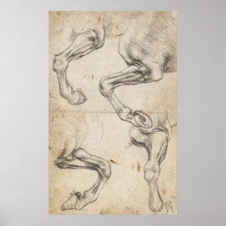 Leonardo Study For Horse Legs Poster