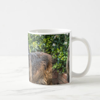 leonberger 3 coffee mug