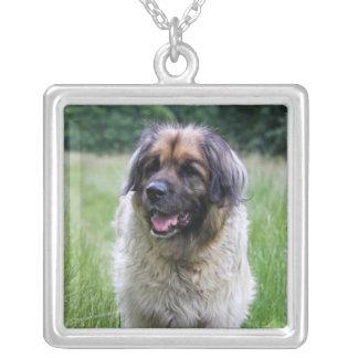 Leonberger dog necklace, gift idea square pendant necklace