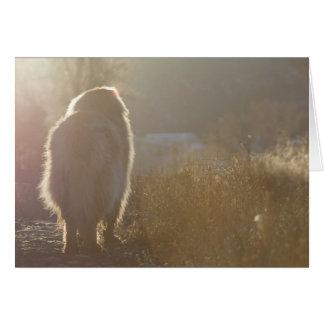 Leonberger Symapthy card