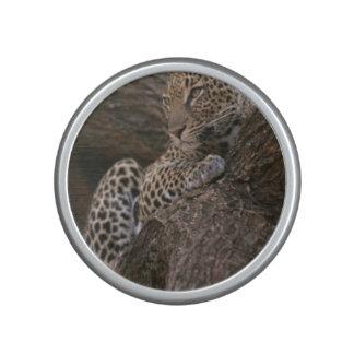 leopard-19 bluetooth speaker