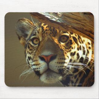 leopard 2 mouse pad
