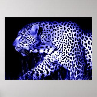 Leopard at Blue Night Poster Pop Art Wild Animals