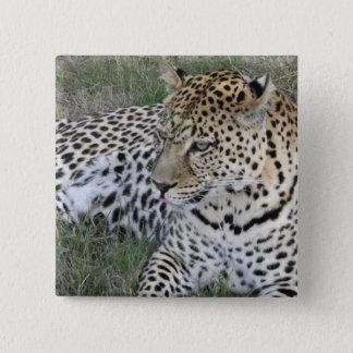 Leopard badge