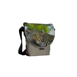 Leopard Cat Animal Print Design Destiny's Destiny Commuter Bag
