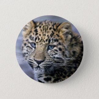 Leopard Cub Badge