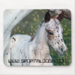 Leopard Filly Mousepad