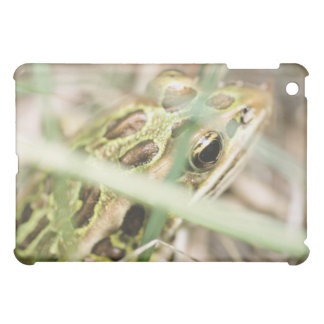 Leopard frog in grass iPad mini cover