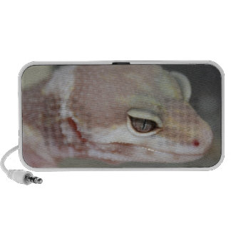 Leopard Gecko Doodle Speaker