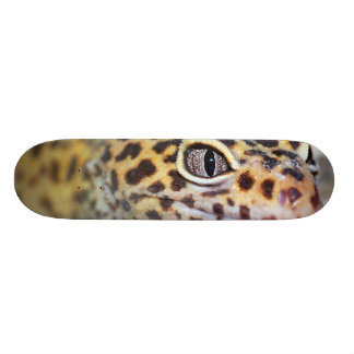 leopard gecko skate board decks