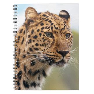 Leopard Head Shot Note Book