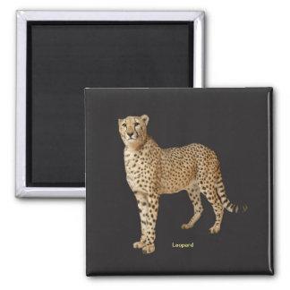 Leopard image for Square Magnet