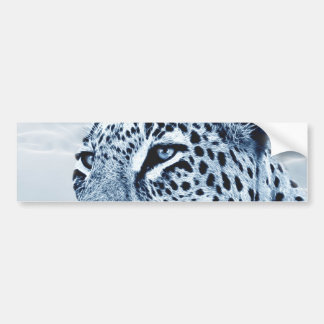 Leopard in Black and White Bumper Sticker