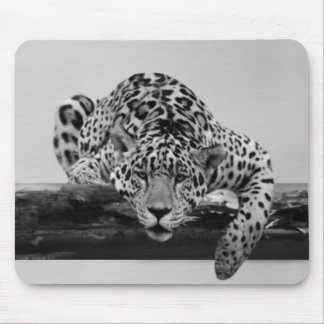 Leopard in black and white mousepad