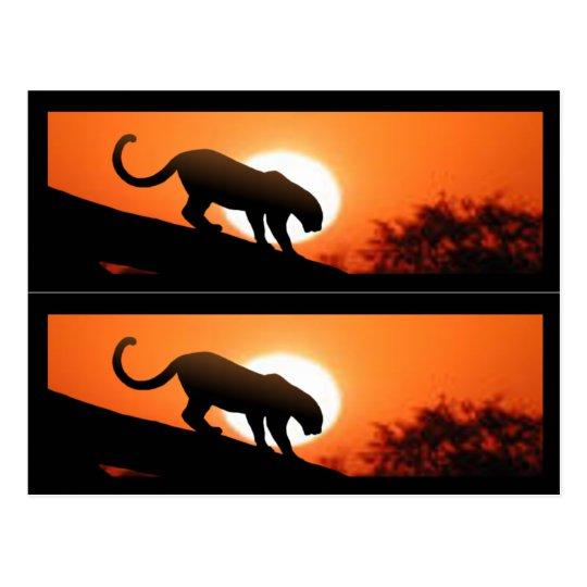 Leopard in Tree bookmarks Postcard