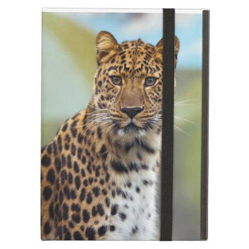 Leopard iPad Folio Case