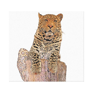 Leopard looking at you canvas print